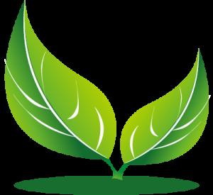 Terreco Logo